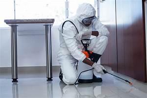 Insecticide Punaise De Lit : insecticide anti punaise de lit les insecticides ~ Farleysfitness.com Idées de Décoration