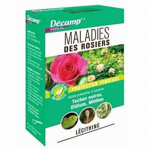Traitement Contre L Oïdium : traitement contre les maladies du jardin ~ Dallasstarsshop.com Idées de Décoration