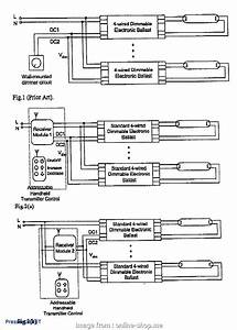 3  Switch Wiring Diagram Lutron Professional Lutron 3