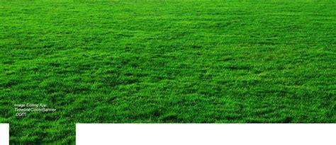 Wide Green Grass Field Facebook Cover