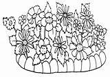 Coloring Flowerbed Bed Flower sketch template