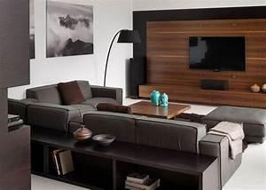 Salon Gris Et Bois : salon noir et blanc et salon gris en 50 photos remarquables ~ Melissatoandfro.com Idées de Décoration