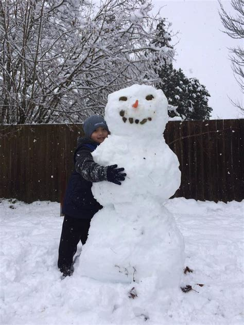 Snow in Seattle: Readers share their photos from around ...