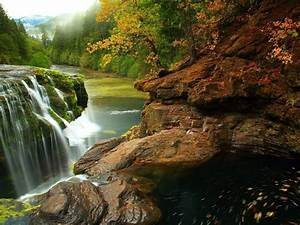 Lewis, River, Falls, At, Gifford, Pinchot, National, Forest