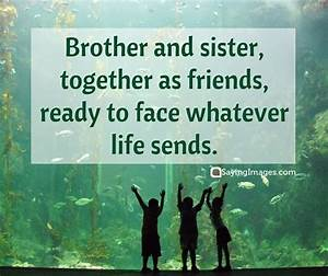 35 Sweet and Loving Siblings Quotes | SayingImages.com