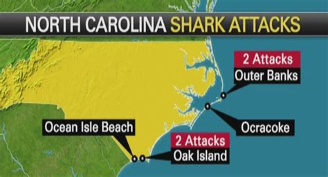 elderly man victim   outer banks shark attack  year