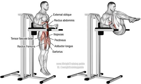 Chair Leg Raise Oblique by Captain S Chair Leg And Hip Raise A Compound Hip And