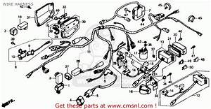 Honda Trx350 Fourtrax 4x4 1986 Usa Wire Harness