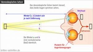 Lichtintensität Berechnen : dioptrien simulator sehsch rfe simulieren seheindruck berechnen ~ Themetempest.com Abrechnung