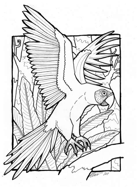 The Daily Art Of Lemurkat Macaw Colouring Page