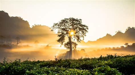 Natural Sunrise Hd Wallpapers 1080p