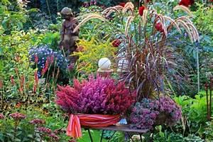 Herbstdeko Für Den Garten : herbst pflanzen und deko f r balkon und terrasse mein sch ner garten ~ Orissabook.com Haus und Dekorationen