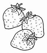 Coloring Strawberry Strawberries Mewarnai Gambar Clipart Buah Coloriage Cherry Anak Strawberi Paud Untuk Dessin Trzy Colorier Tk Printable Czerwone Fraise sketch template