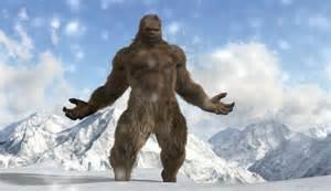 Bigfoot Real Sasquatch Pics