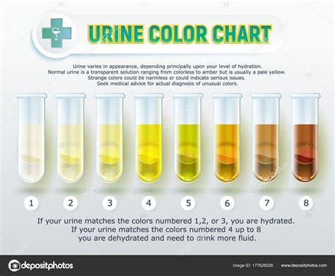 urien colors cartela de cores da urina 1 vetores de stock