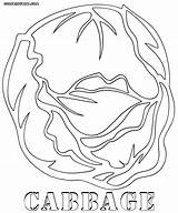 Cabbage Coloring Colorings Coloringway sketch template