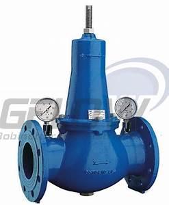 Pression De L Eau : r ducteur de pression r gulateur de pression gflow ~ Dailycaller-alerts.com Idées de Décoration