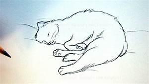 Zeichnen Lernen Mit Bleistift : katze zeichnen lernen tiere zeichnen und malen schlafende katze diy ~ Frokenaadalensverden.com Haus und Dekorationen