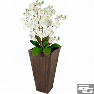 Www Blumenkübel De : rattan blumentopf bertopf blumenk bel polyrattan pflanzenk bel blumen pflanzen ~ Sanjose-hotels-ca.com Haus und Dekorationen