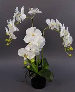 Kunstblumen Orchideen Topf : orchidee 60x40cm wei ga kunstpflanzen k nstliche blumen orchideen kunstblumen ebay ~ Whattoseeinmadrid.com Haus und Dekorationen