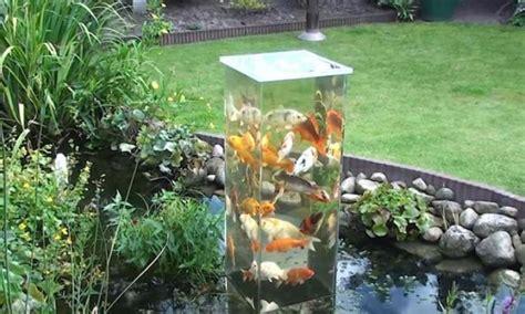 poisson pour bassin d exterieur magnifique un aquarium ext 233 rieur de bassin pour observer les poissons elleadore