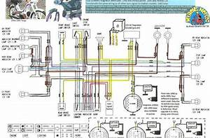Derbi Senda 50cc Wiring Diagram Efcaviation Com 2012 Tomos
