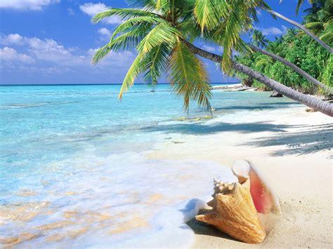tropical island sandy beach ocean turquoise water sea