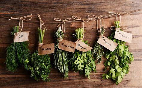 herbes aromatiques en cuisine les herbes de cuisine 28 images comment utiliser les