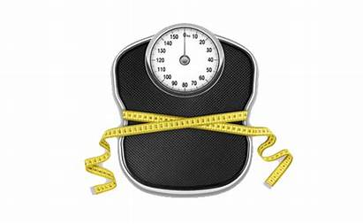 Weight Scale Scales Transparent Loss Clipart Background