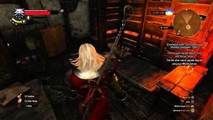 The Witcher 3 Wild Hunt Find Feline Silver Sword Enhanced