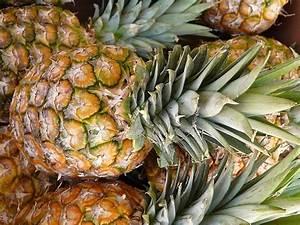 Wie Schneidet Man Fenchel : wie schneidet man eine ananas ~ Eleganceandgraceweddings.com Haus und Dekorationen