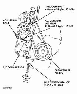 31 2006 Honda Odyssey Serpentine Belt Diagram