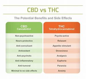 Hemp  U0026 Cbd Uses  Benefits  U0026 Impact Guide