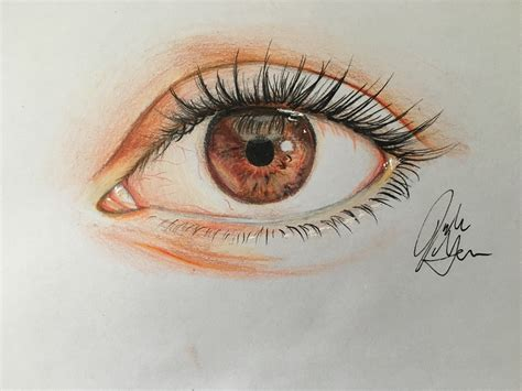 draw  eye  colored pencil  pictures wikihow