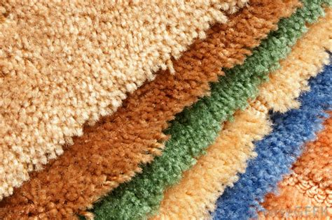 What Are The Best Carpets For Those With Allergies?