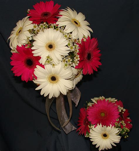 Best 25 Gerbera Daisy Wedding Ideas On Pinterest