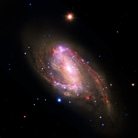 Space Images   NGC 3627: Revealing Hidden Black Holes