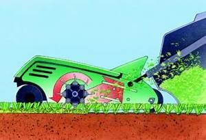 Rasen Vertikutieren Lüften : rasen richtig pflegen schneiden vertekutieren keine chance f r moos klee butterblumen ~ Markanthonyermac.com Haus und Dekorationen