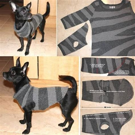 wonderful diy recycled dog  cat sweater