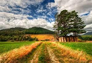 Beautiful, Landscape, Scene, Panorama, Trees, Field, Natural