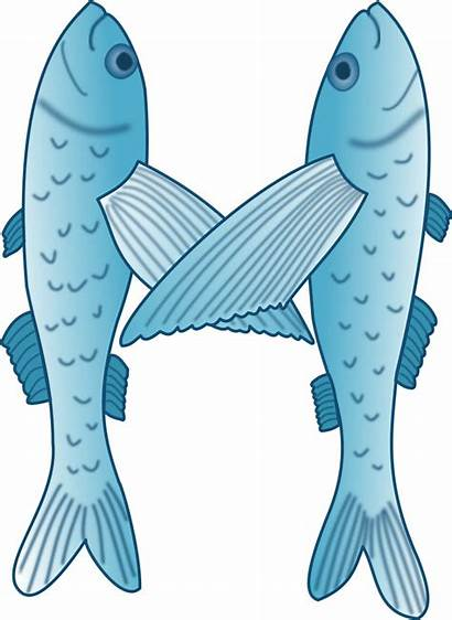 Letter Fish Clip Clipart Forming Vector Flying