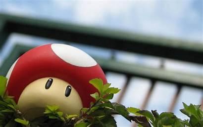 Mario Mushroom Wallpapers Desktop Seta Cogumelo Pantalla