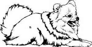 Cute Pomeranian Dog Coloring Pages | UTILILAB SearchGUARDIAN