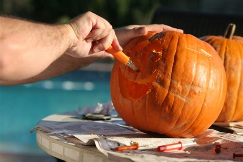 Where Did Carving Pumpkins Originated by 100 Where Did Pumpkins Originate 1216 Best Fall Is