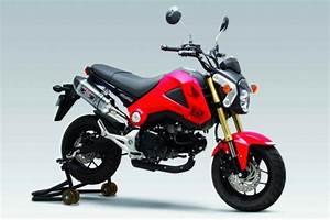 Petite Moto Honda : la petite honda msx 125 en yoshimura ~ Mglfilm.com Idées de Décoration