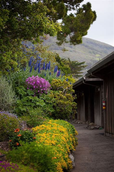esalen institute photoshelter sur