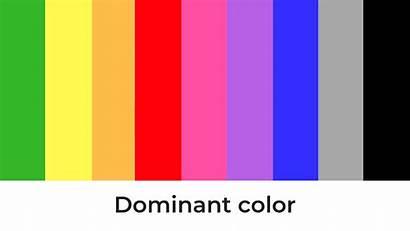 Dominant Scheme Perfect Combination Website Pick Choose