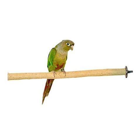 birds love bottlebrush wood bird cage perch ebay