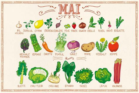oseille cuisine calendrier des fruits légumes du mois de mai