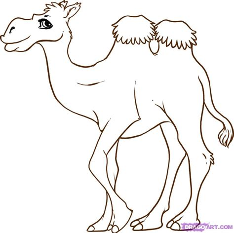 draw  cartoon camel step  step cartoon animals